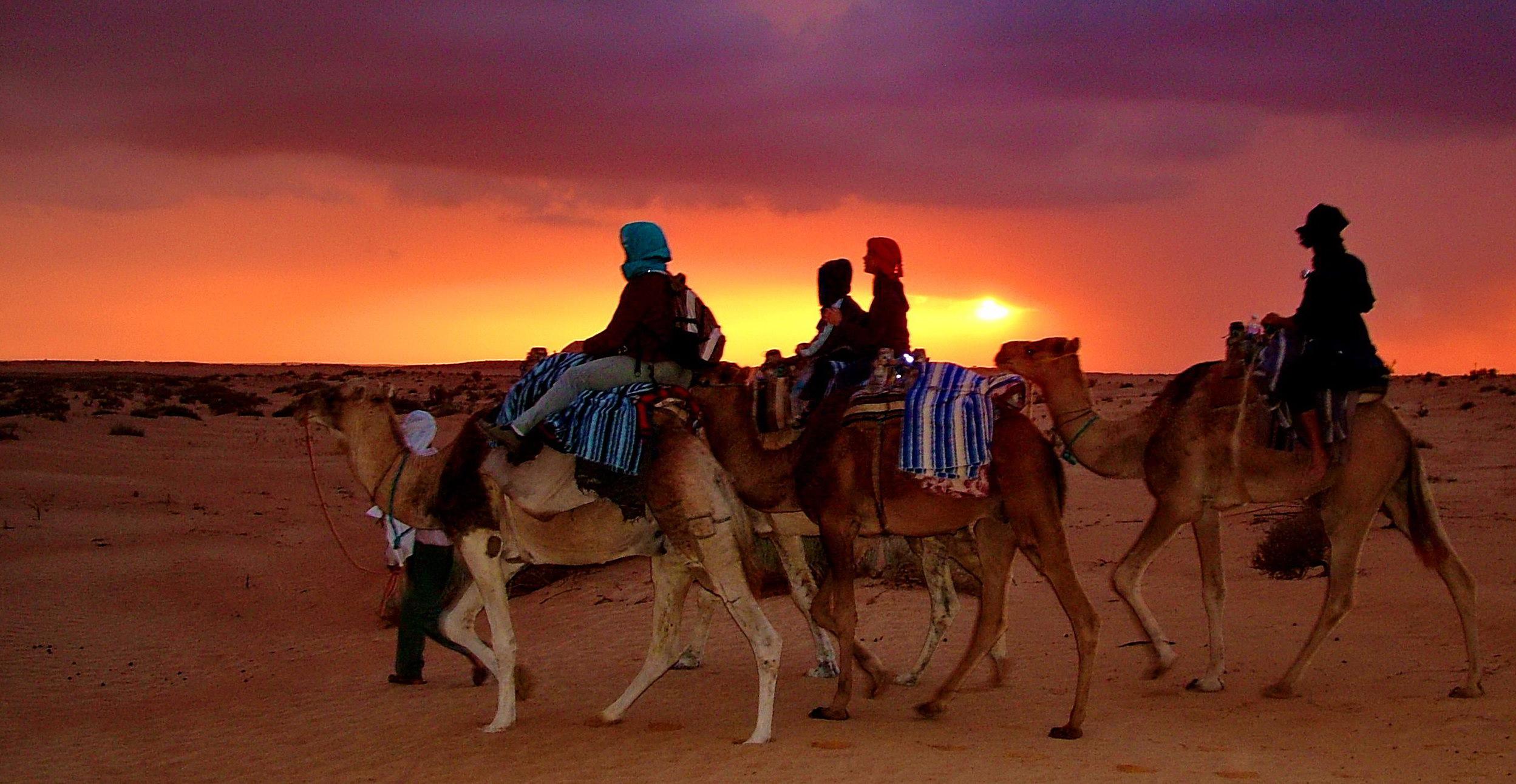 Sahara-hovedbilde.jpg